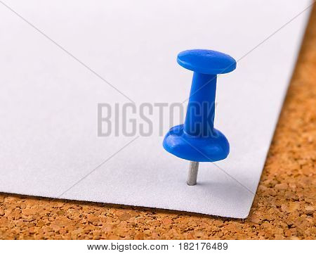 The plastic button with a needle stuck in an iron sheet of white paper on a wooden stopper.