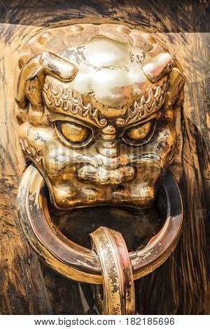 Gilded bronze head of dragon or lion with ring in mouth. Old handle of big vat for water in case of fire in ancient chinese palace