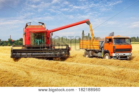 Harvester machine and tractor at a harvest