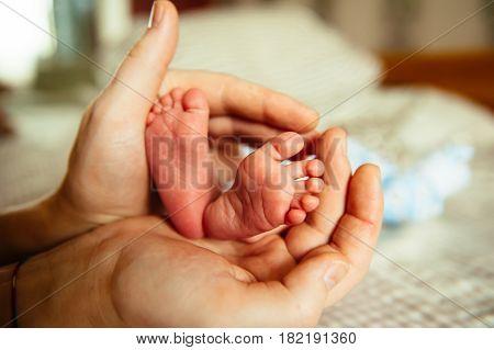 Baby little pink feet in parent hands