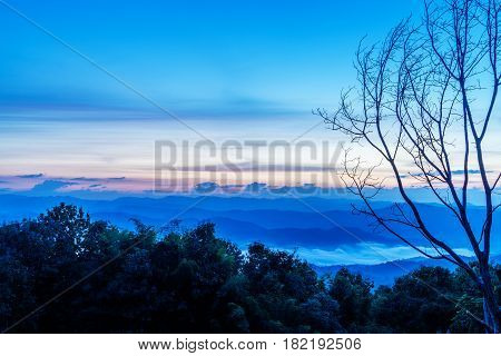 Leafless tree in front of the misty mountain in winter Nan of Thailand Landscape of Luang Prabang Range cover with foggy .