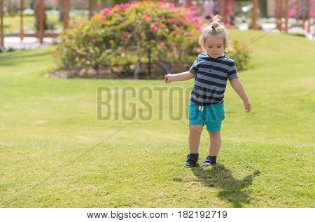 Cute Baby Boy Playing On Green Grass