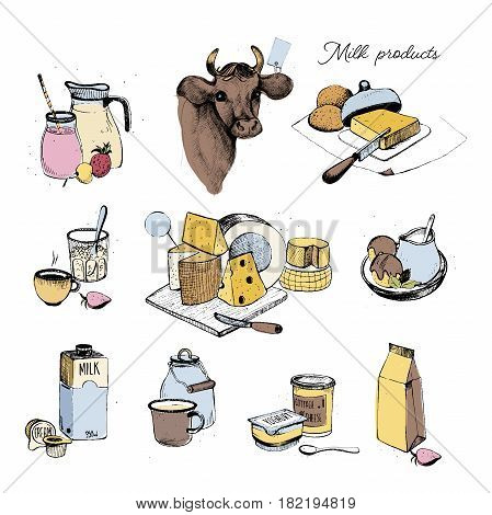 Dairy products hand drawn collection, Set milky farming assortment. Vector colorful illustration on white background.