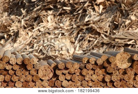 Wood industry with waste