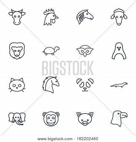 Set Of 16 Brute Outline Icons Set.Collection Of Feline Bear, Penguin, Horse And Other Elements.