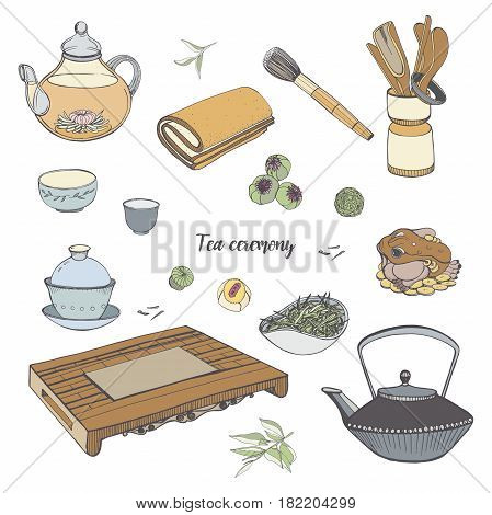 Set tea ceremony with various traditional tools. Teapot, bowls, gaiwan. Colorful hand drawn illustration