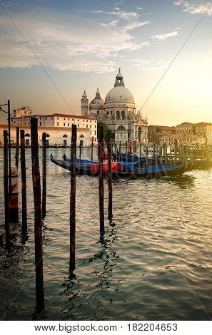 Basilica di Santa Maria della Salute and gondolas at sunset in Venice, Italy