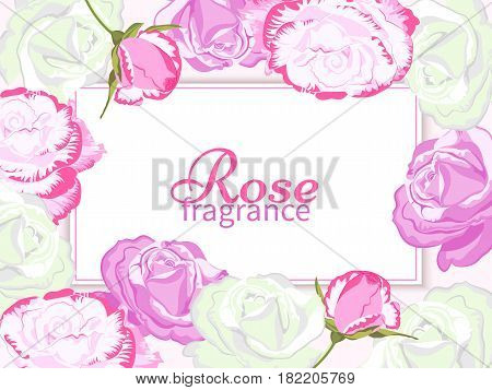 Fragrance Rose background.Card or banner with buds of roses and place for text.Design for natural cosmetics, beauty salon, perfumery, natural and organic products, health care products, aromatherapy.