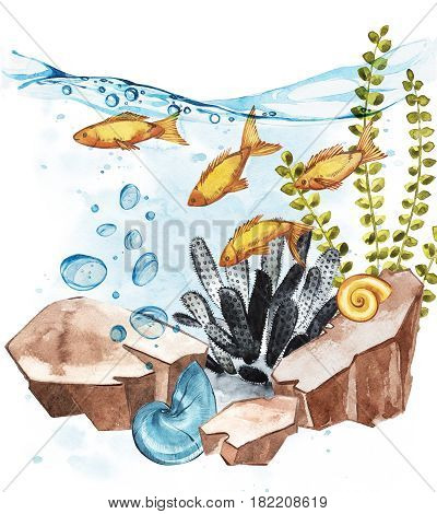 Marine Life Landscape - the ocean and the underwater world with different inhabitants. Aquarium concept for posters, T-shirts, labels, websites, postcards