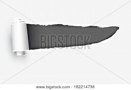 Realistic torn paper with ripped edges vector illustration isolated on white background.