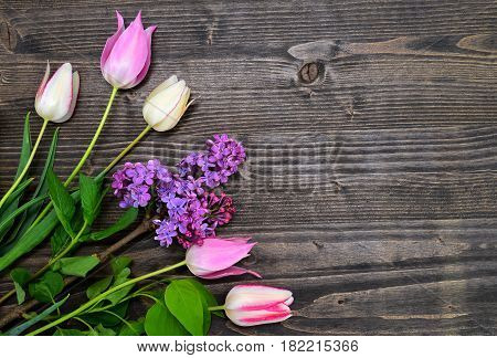 tulips and lilac over dark wood spring background