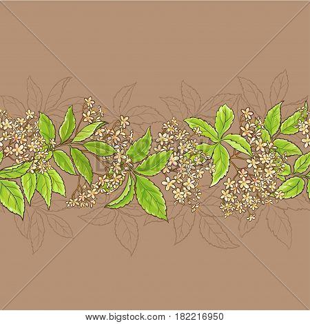elderflower horizontal vector pattern on color background