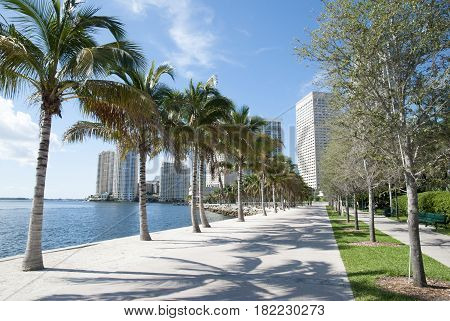 The park walkway along the water in Miami downtown (Florida).