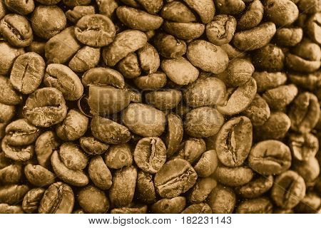 drink plant seed. brown coffee arabica bean for background