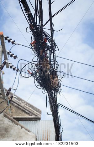 bird nest in electricity and telephone maze cable in Thailand