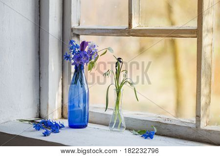 Blue snowdrop flowers in a dirty window in the spring