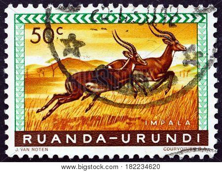 RUANDA-URUNDI - CIRCA 1959: a stamp printed in Ruanda-Urundi shows Impala Aepyceros Melampus Animal circa 1959