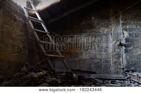 Roof space of abandoned house with old floor covered with guano ,Odessa, Ukraine ,Europe