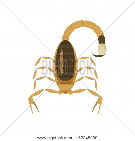 Vector flat style illustration of poisonous scorpion. Icon for web. Isolated on white background.