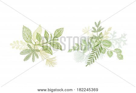 Green leaf hand drawn arrangement. Vector greenery bouquets isolated on white background. Love spring design set for cards