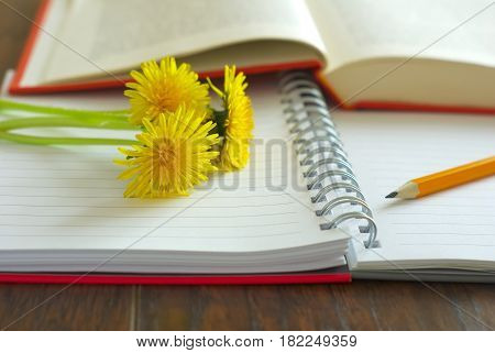 Yellow flowers on open notepapers Happy Teachers Day greeting image. Dandelion flowers spring celebration. School study book and notes pencil.