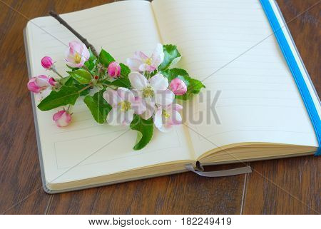 Flower spting blossom on blank diary page. Romantic lyrics notebook. Greeting writing paper. Open notepaper book with copy space.