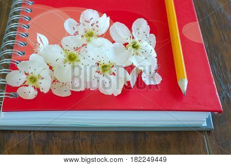 Romantic letter diary. Spring blossom on notebook with pencil love message symbol. Lovely flowers passion concept. Love lyrics book.