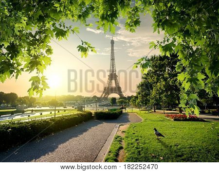 Jardins du Trocadero near Eiffel Tower in Paris, France