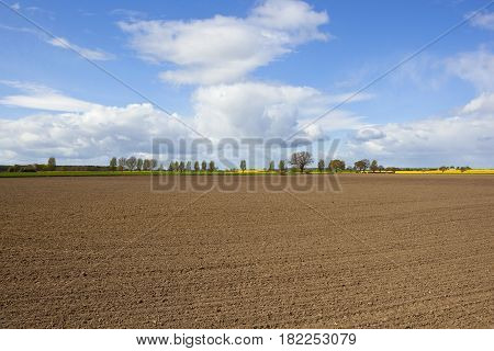 Agricultural Landscape With Plowed Soil