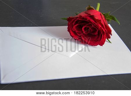a white envelope with a rose and pen