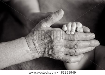 Great-grandmother Holds The Hands Of His Beloved Grandson
