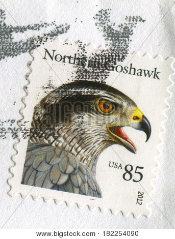 GOMEL, BELARUS, APRIL 17, 2017. Stamp printed in USA shows image of  The Northern Goshawk, circa 2012.