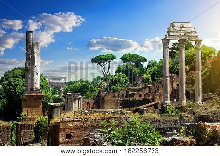 Ruined Roman Forum at sunny day, Italy
