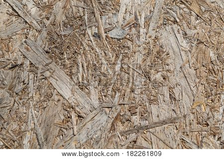 Part of molded plate from sawdust or wood chips. The color of sawdust chips yellow brown beige gray. The sawdust fibres arranged randomly.