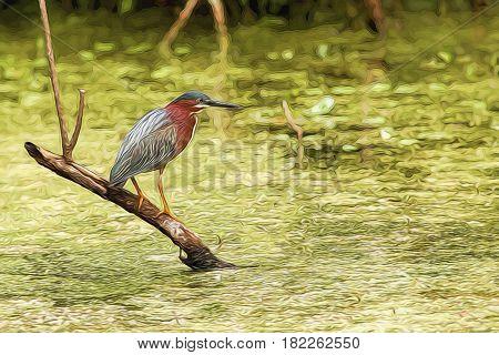 Illustrative image of a heron standing on dead limb.