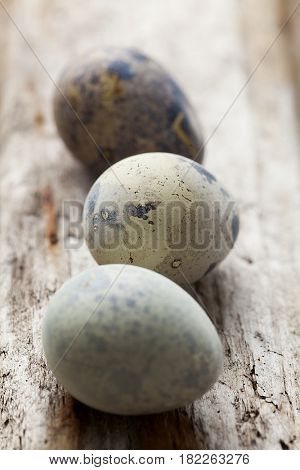 selection of quail eggs