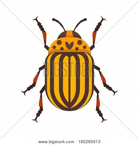 Vector flat style illustration of Colorado beetle. Icon for web. Isolated on white background.