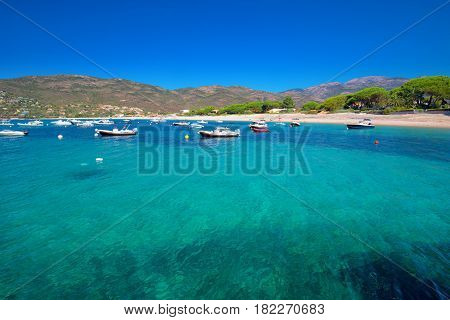 Mediteranian Corsica Island With Pine Trees, Sandy Beach, Tourquise Clear Water And Yachts In Bay, C