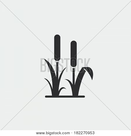 Silhouette reed isolated on white background .