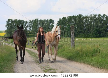 Young Woman Walking With  Two Horses
