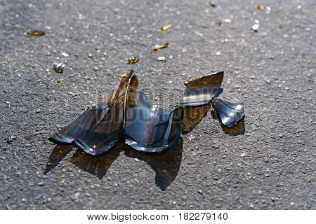 Shards of brown glass on the asphalt. Broken bottle of beer