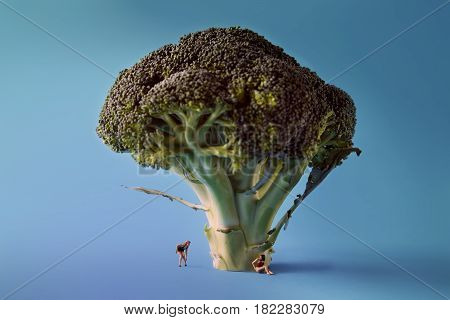 Microworld in women figures under the tree broccoli on blue background. Cartoon style food photography