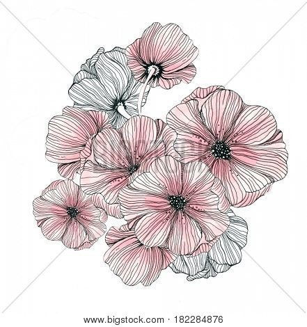 Hand drawn flowers. Linear design with pink coloring