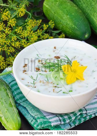 Summer cold yogurt soup with fresh cucumber dill and walnuts