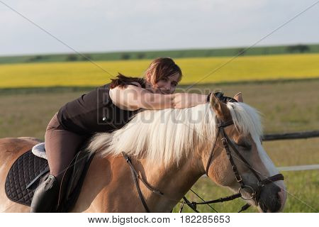 A Young Woman Posing On  A Horse Haflinger