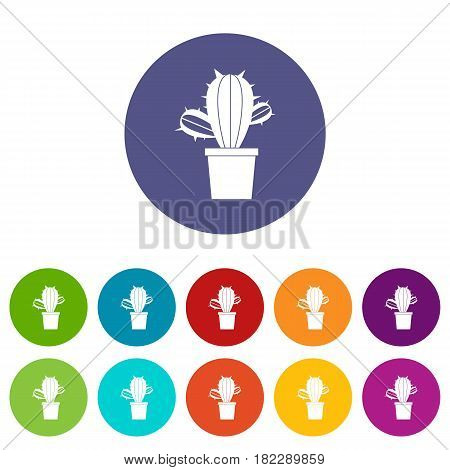 Cactus houseplants in pot icons set in circle isolated flat vector illustration
