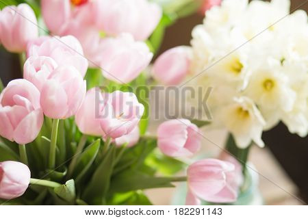 Pink tulips on the wooden background. Pink tulip. Tulips. Flowers. Flower background. Flowers photo concept. Colored tulips. Petals. Narcissus