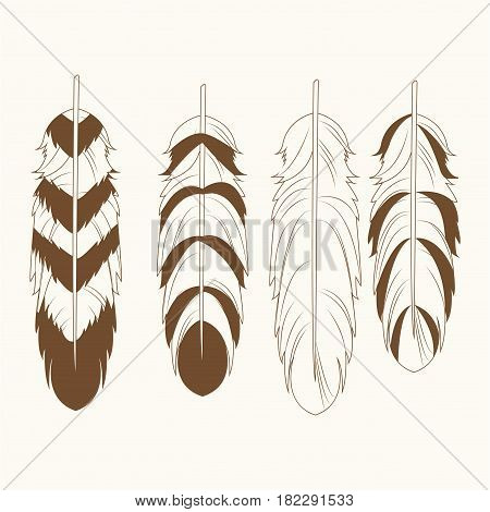 collection differents feathers free spirit vector illustration eps 10