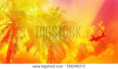 Background of golden sky and coconut tree with silhouette plane for summer background