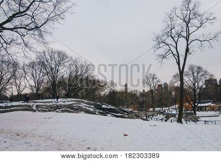 Skyline from Inside Central Park New York City USA